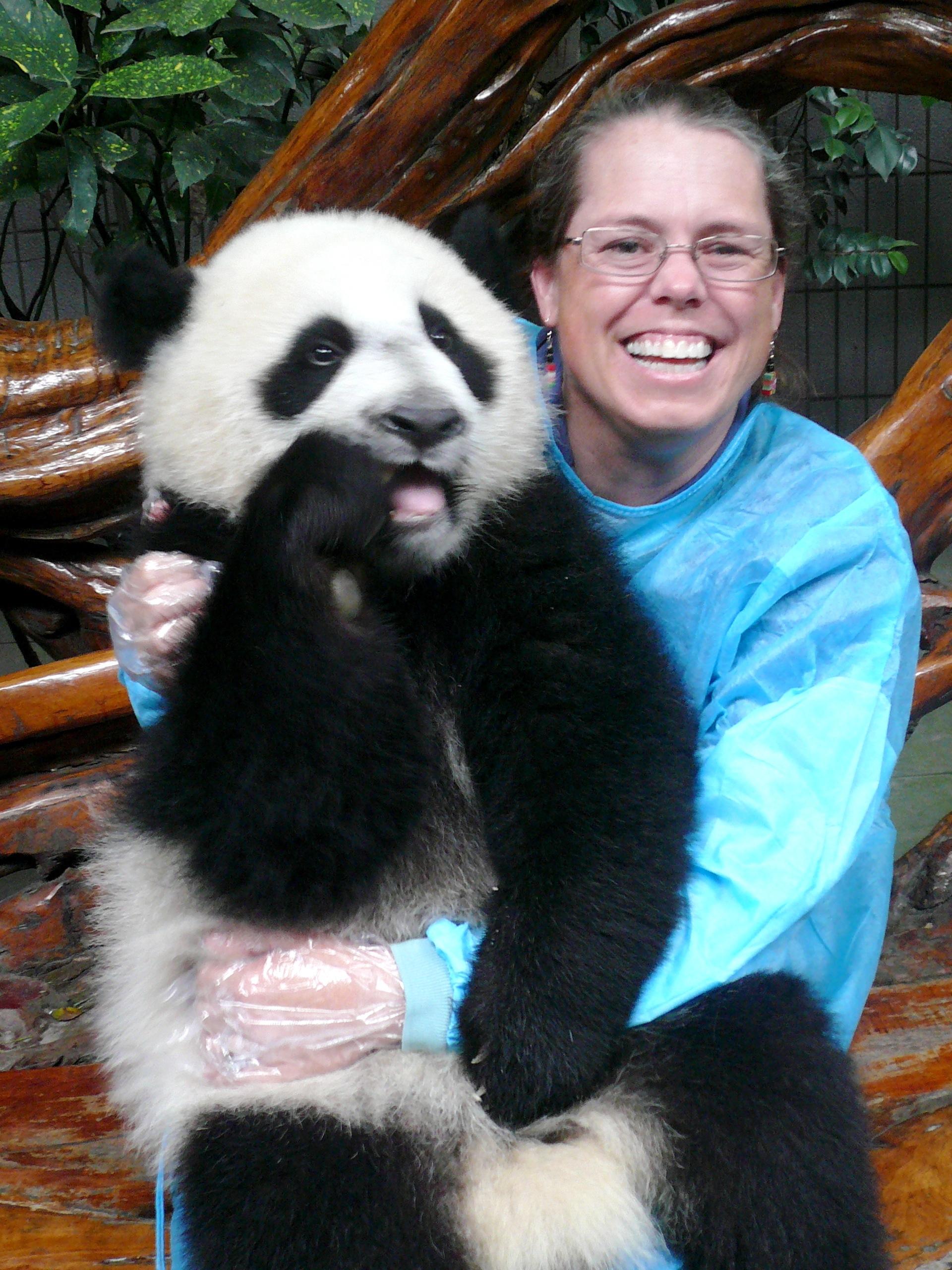 Broido panda